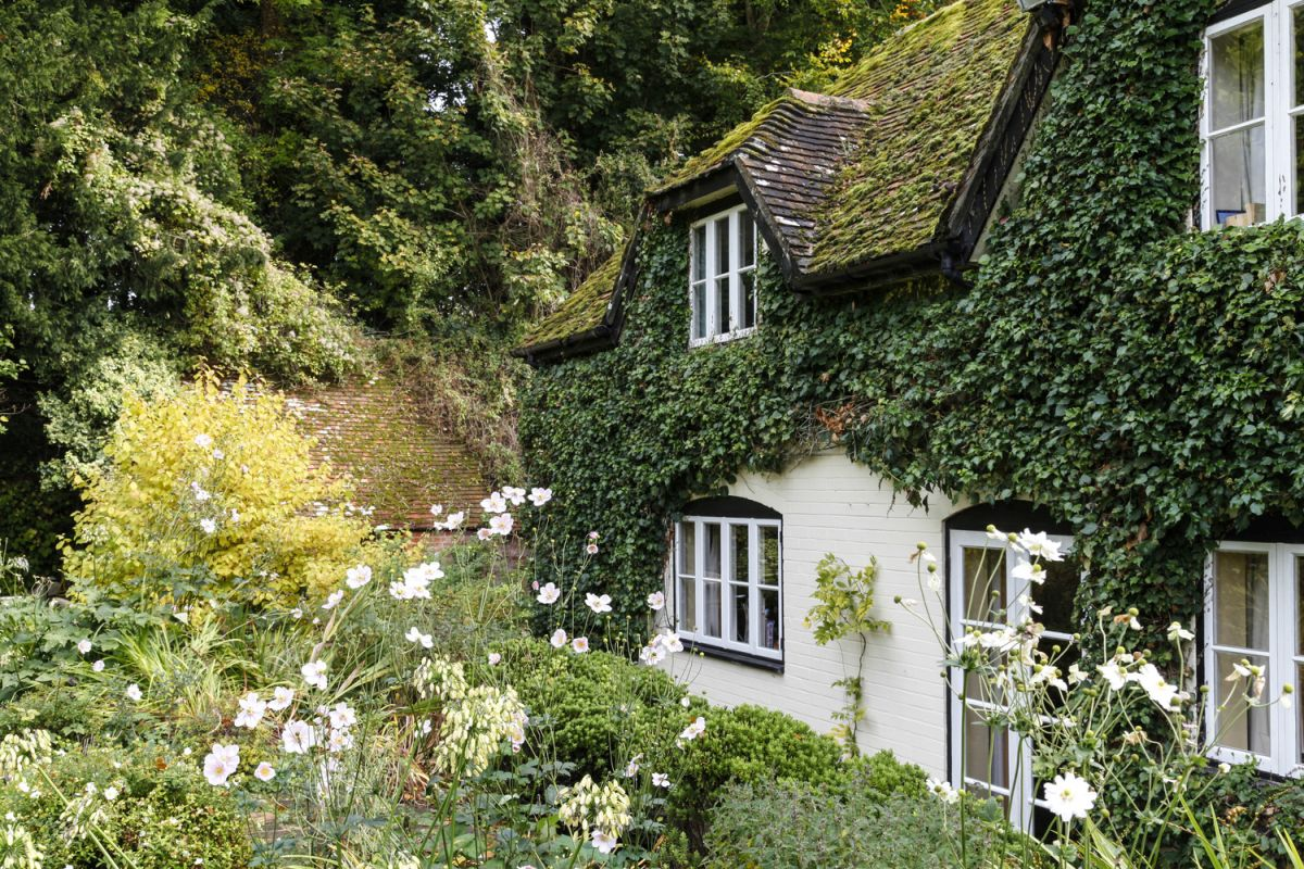 The opposite side of the house sticks to a classic English cottage garden.