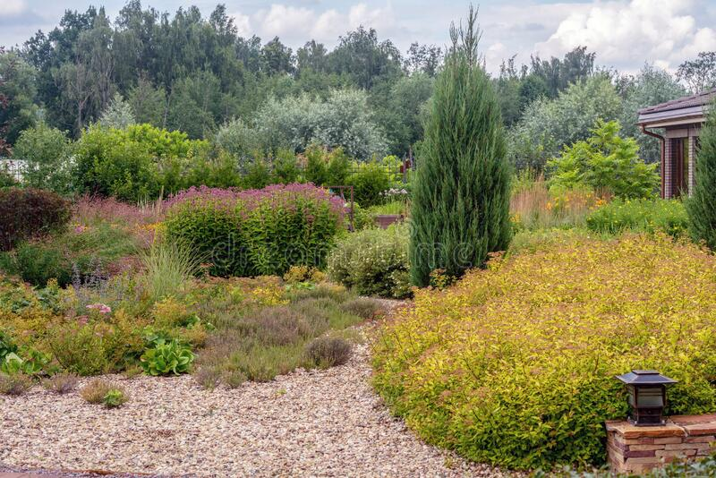 Amazing garden with perennials close to dacha  in russian prosperous village named `belgian village`. Amazing garden with perennials close to dacha mansion  in stock photography