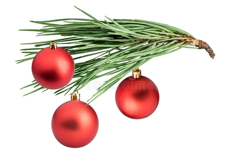 Branch of pine with cones and Christmas balls stock photo