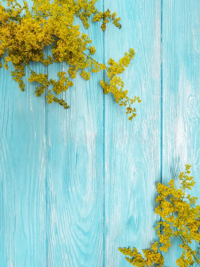 Yellow flowers autumn frame floral retro decoration blooming on a blue wooden background. Yellow flowers frame a blue wooden background autumn blooming royalty free stock photo