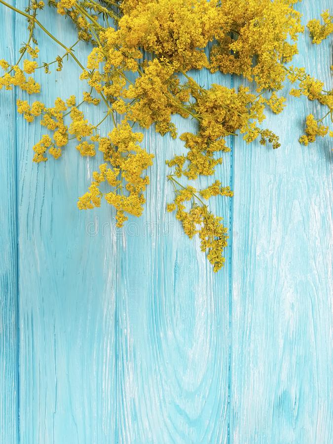 Yellow flowers autumn frame retro season decoration blooming on a blue wooden background. Yellow flowers frame a blue wooden background autumn blooming floral stock photography