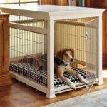 Загон для собаки в квартире: размеры, как сделать комнатный манеж своими руками, а также как построить красивый загон для маленьких питомцев?